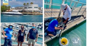 Marina Ibiza refuerza su cuidado del medio ambiente con nuevas acciones.