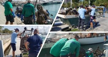 Marina Port de Mallorca y Marina Palma Cuarentena limpian su fondo marino
